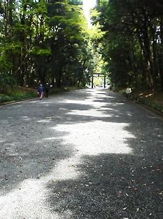 hikarinokawa2.jpg