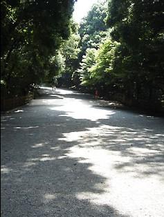 hikarinokawa3.jpg