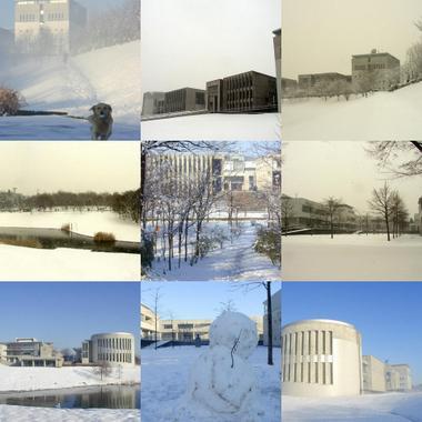 sfc_snow.jpg