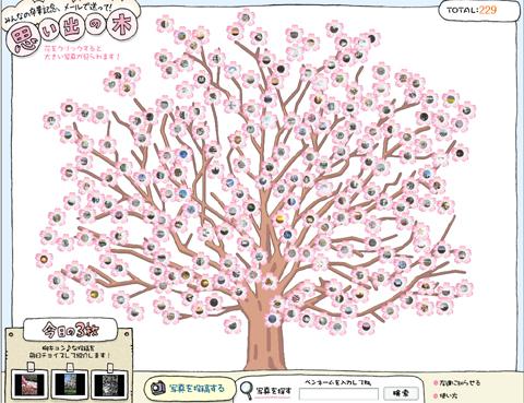 sotsuometree.jpg
